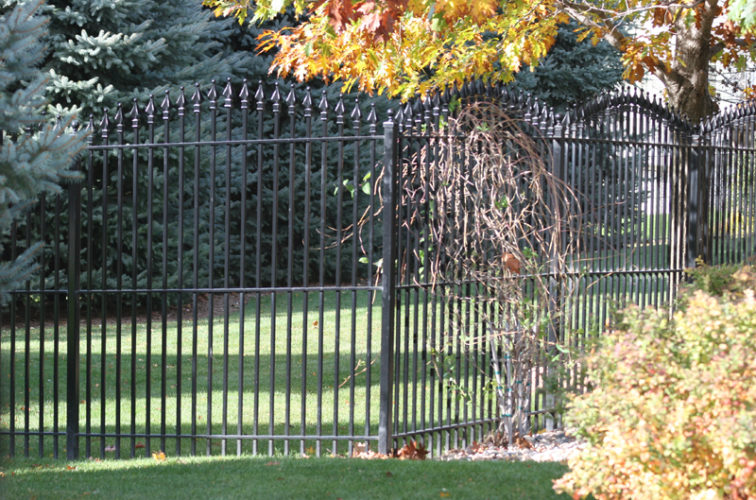 AFC Iowa City - Custom Iron Gate Fencing, 1220 Quad Flare Overscallop Ornamental Iron Photo