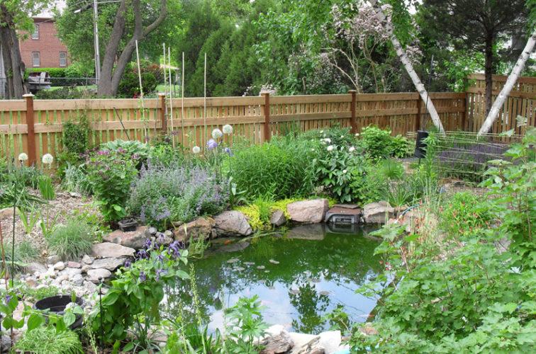 AFC Iowa City - Wood Fencing, Landscaped Backyard